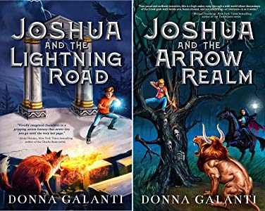 Donna Galanti Books